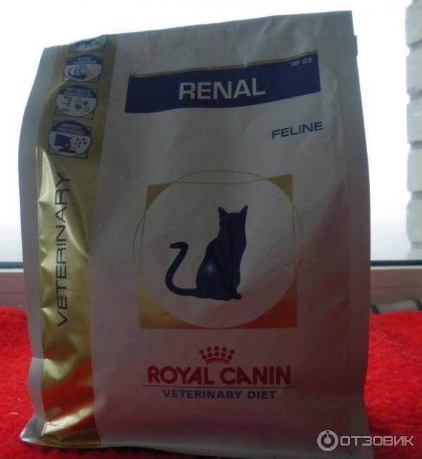 Лучший корм для кошек с почечной недостаточностью || корм ренал для кошек