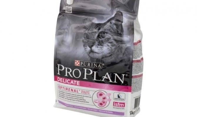 Холистик корма для кошек – преимущества, рейтинг, рекомендации