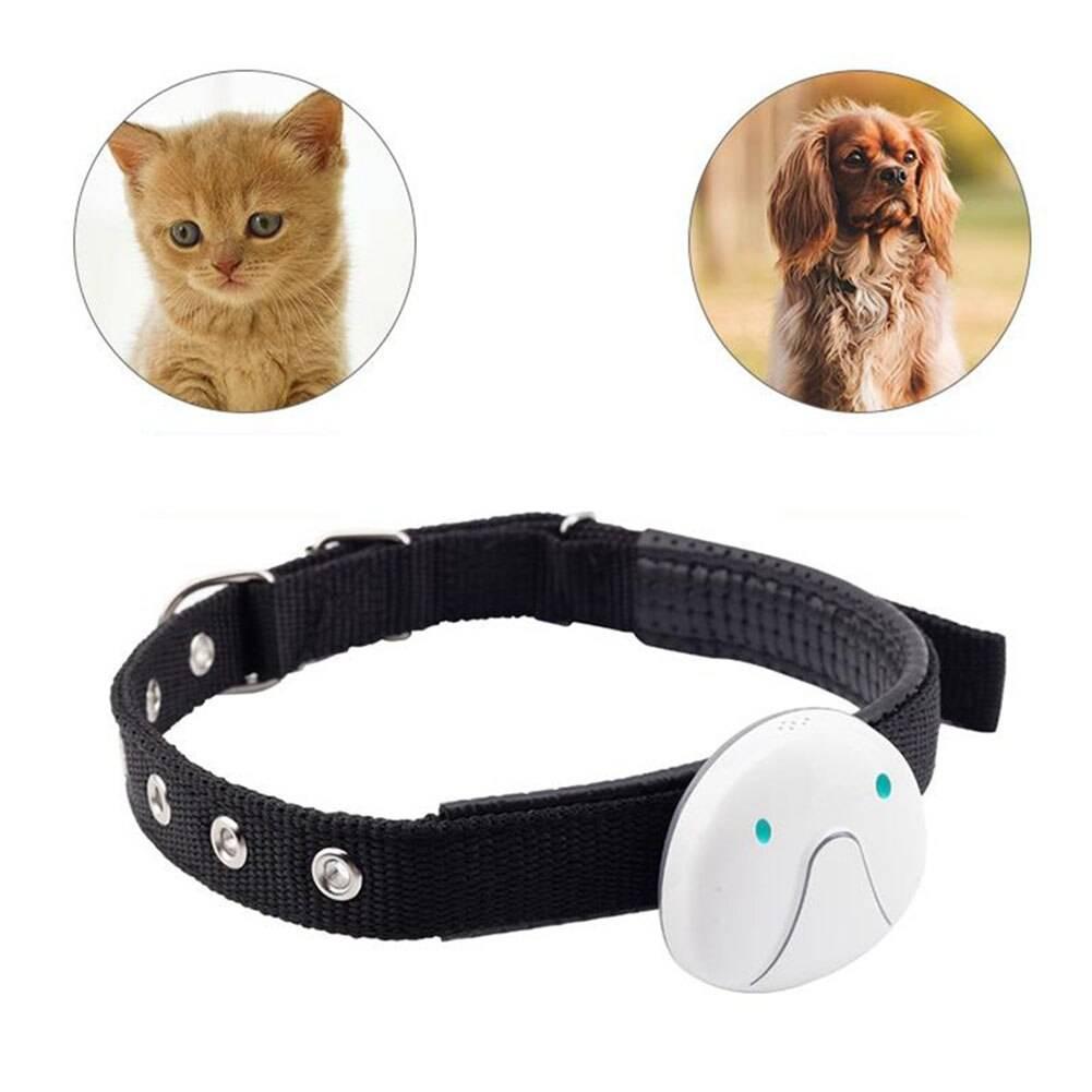 Электронный ошейник для кошек