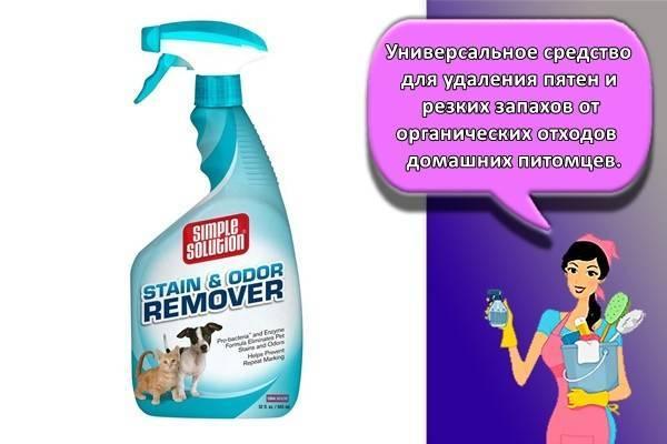 Чем эффективнее отмыть кошачью мочу