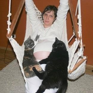 Почему кошка ложится на живот беременной