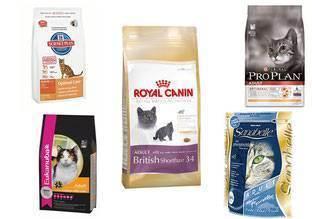Сравнительный анализ и классификация кормов для кошек по составу, классу и видам
