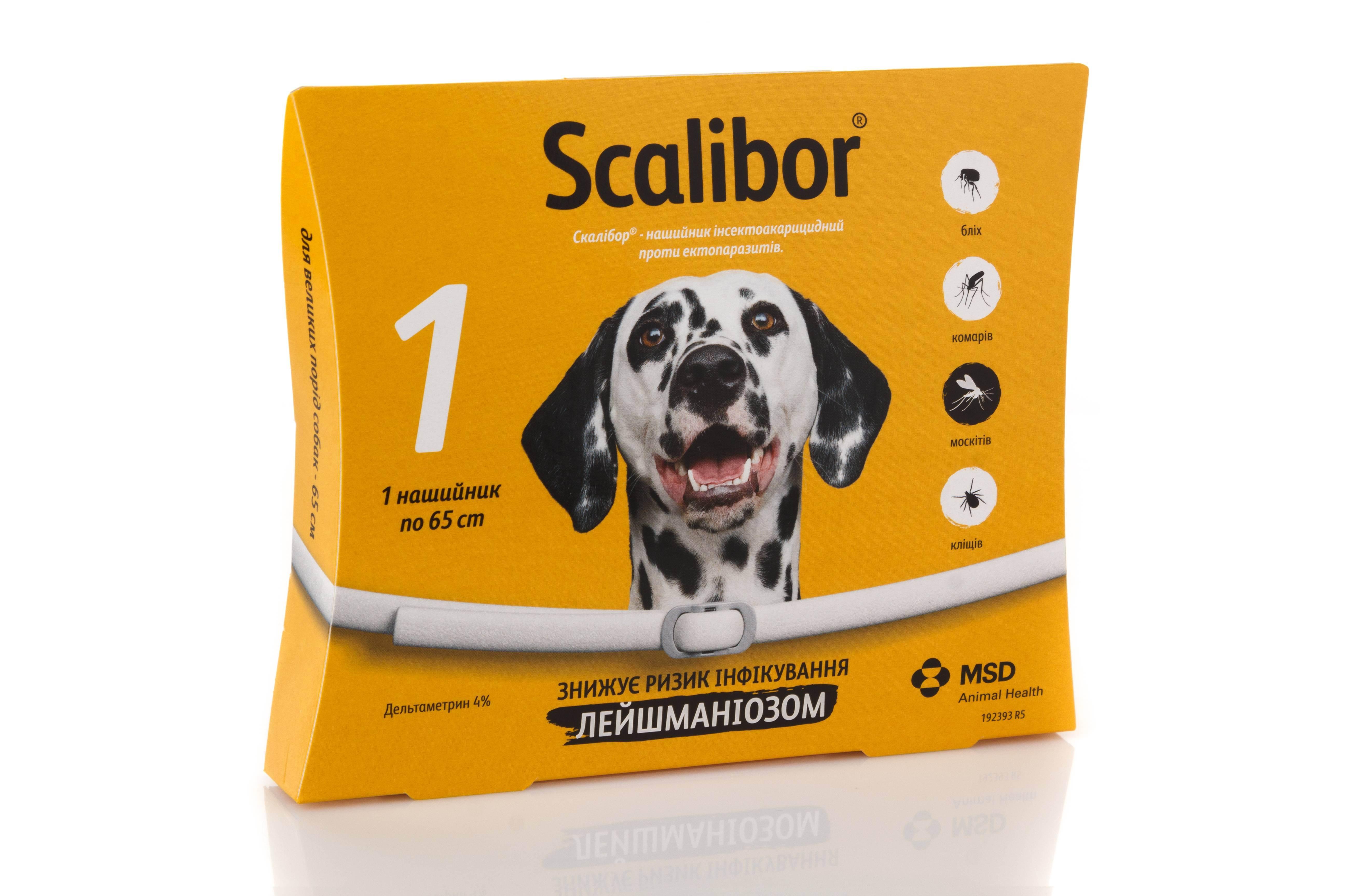 Как выбрать средство от блох для собак - обзор самых эффективных средств