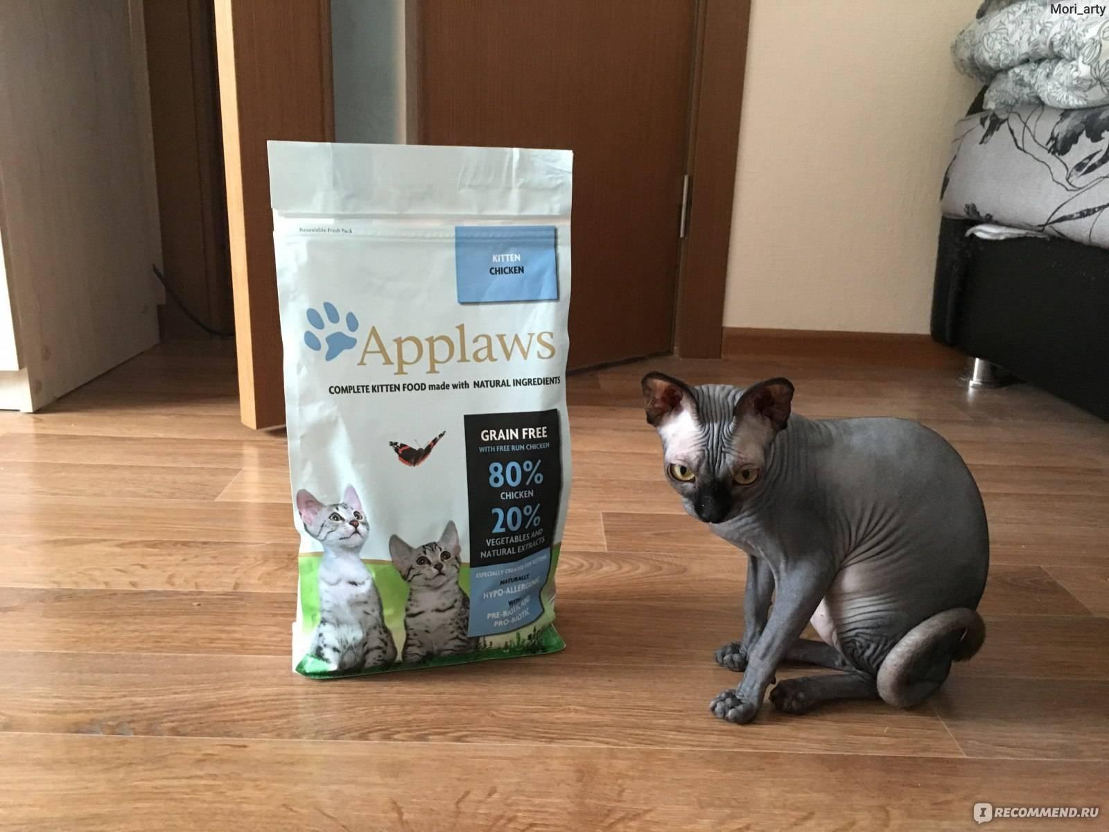 Чем кормить сфинкса: котенка 2 месяца и взрослую лысую кошку, донского или канадского
