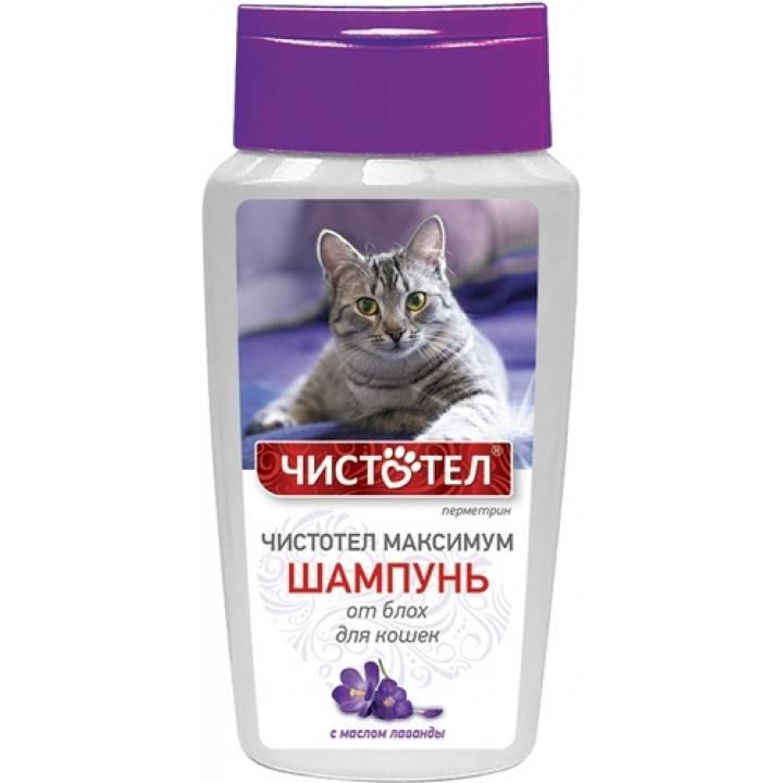 Как действуют шампуни против блох для котов и маленьких котенков: какой выбрать