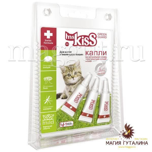 Выбор и применение капель от блох для кошек