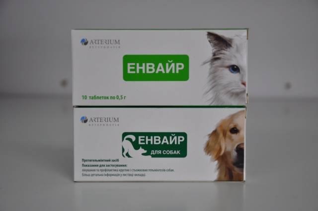 Препараты от глистов для котят, щенят и взрослых животных. автор ветеринар | дети фауны