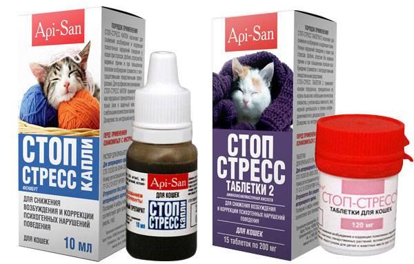 Стоп-стресс для кошек в таблетках и каплях: инструкция, состав, отзывы
