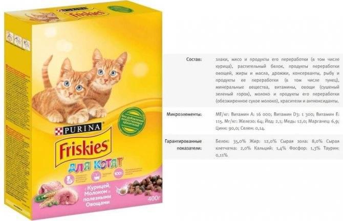 Сравнение кормов для кошек