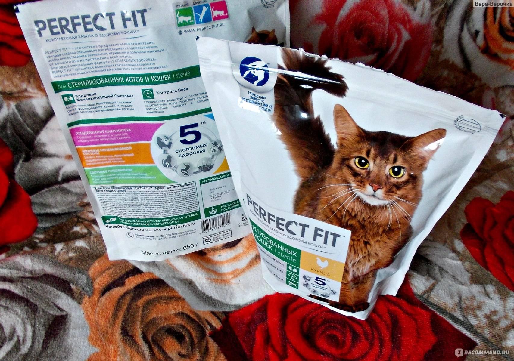 Корма супер-премиум-класса для стерилизованных кошек: рейтинг лучших производителей, правила выбора