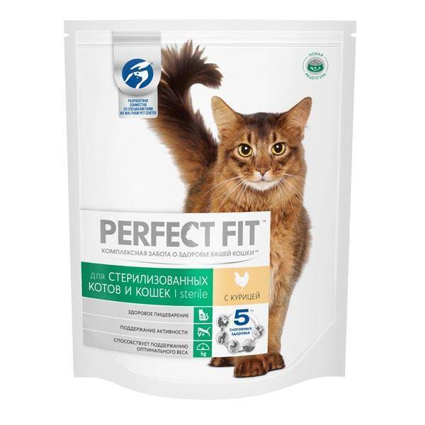 Кормите питомцев правильно: полезен ли корм для кошек?