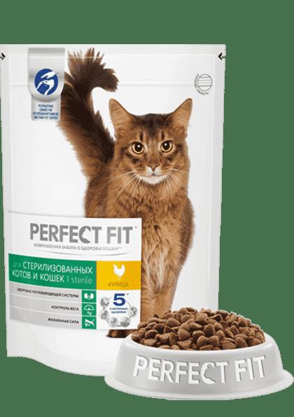 Откуда берутся вредные кошки?