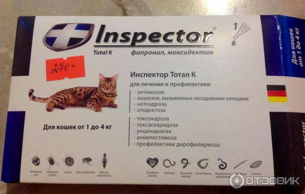 Обзор лучших глистогонных таблеток для кошки: какое средство выбрать