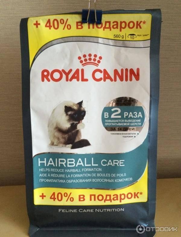 Корм для кошек холистик класса: его состав, рейтинг 2019 года, отзывы ветеринаров о holistic питании для взрослых животных и котят