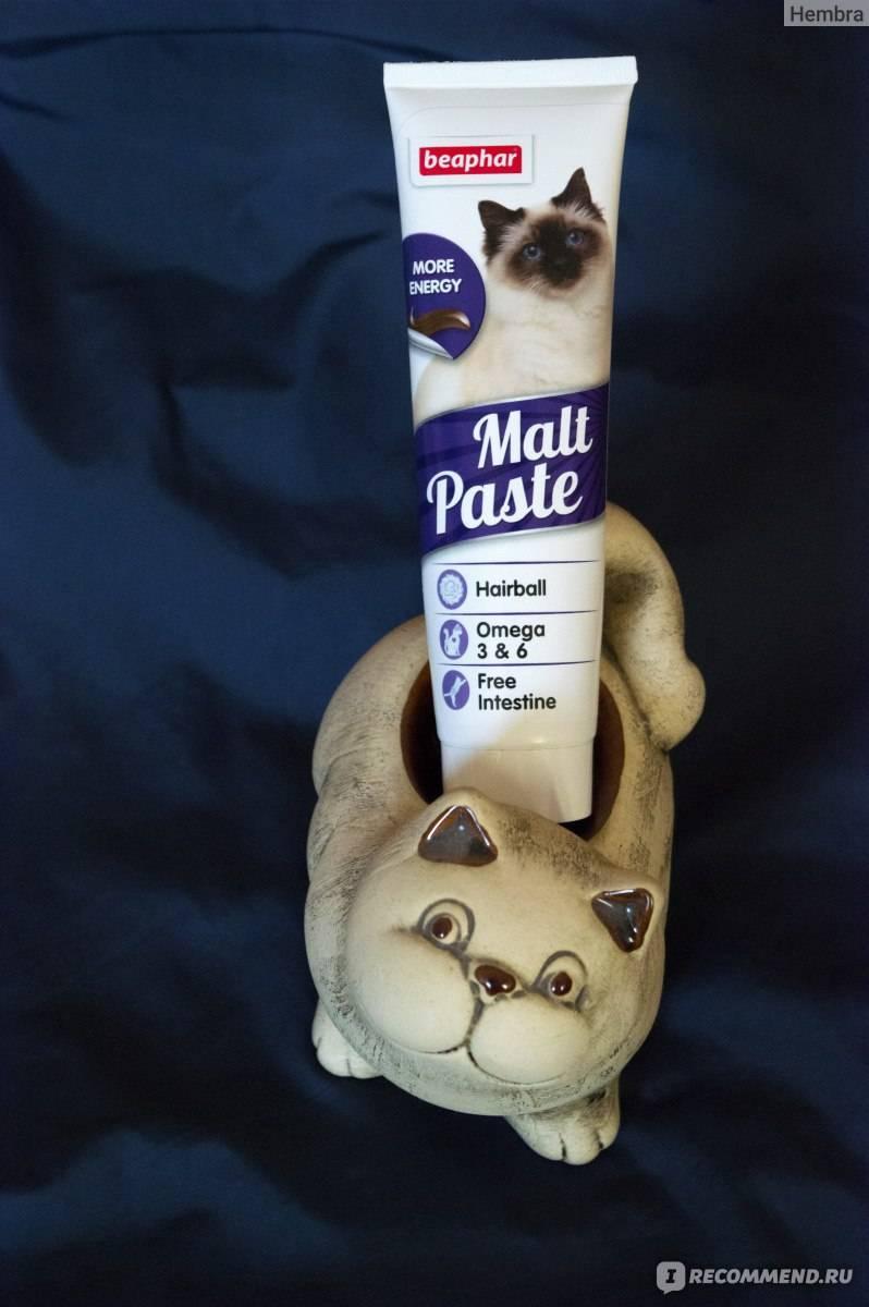 Мальт-паста для выведения шерсти у кошек: необходимость применения, плюсы и минусы, способ употребления, перечень популярных марок
