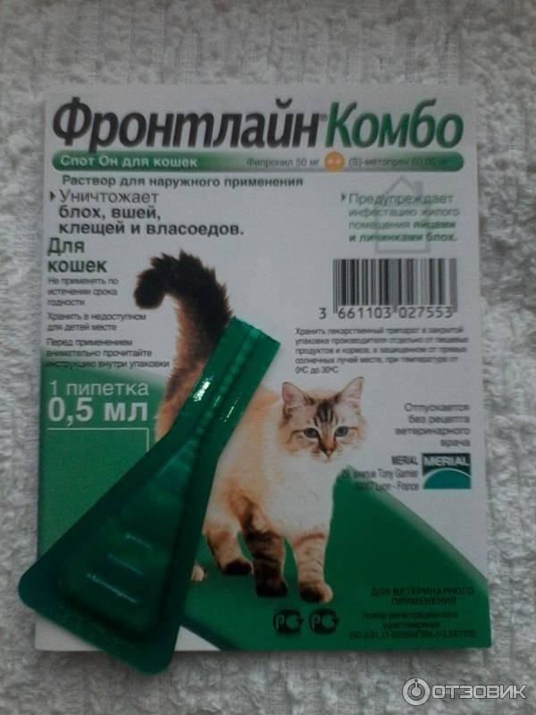 Капли от глистов и блох на холку для кошек: рассмотрим вместе