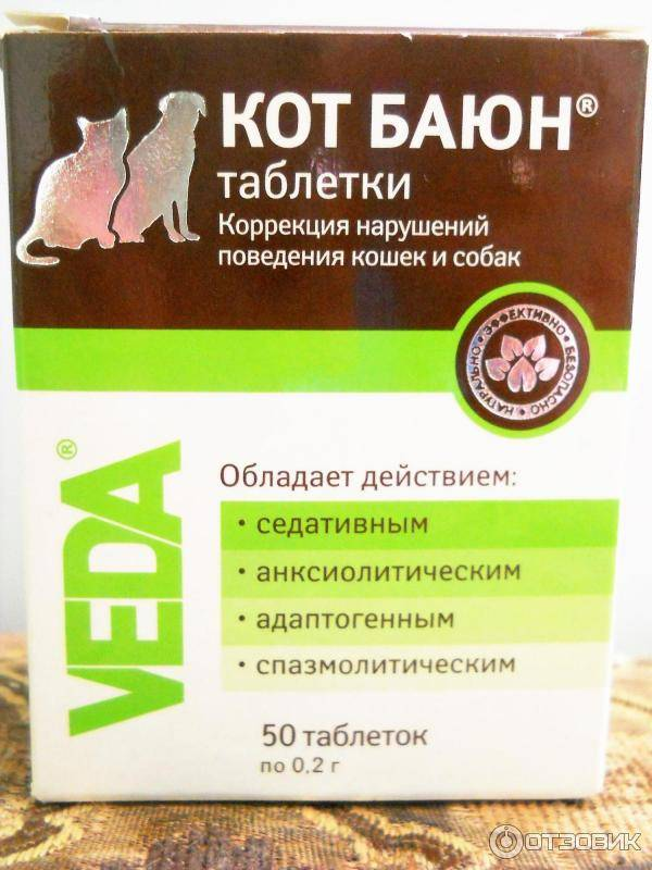 Капли для кошек во время течки: названия, инструкция по применению