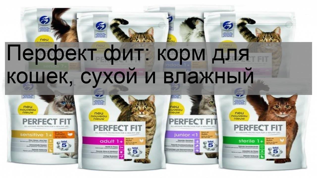 Кошачий корм perfect fit: отзывы покупателей и ветеринаров + фото и видео