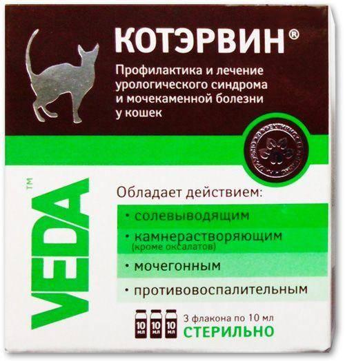 Мочекаменная болезнь у кошек -  симптомы и лечение