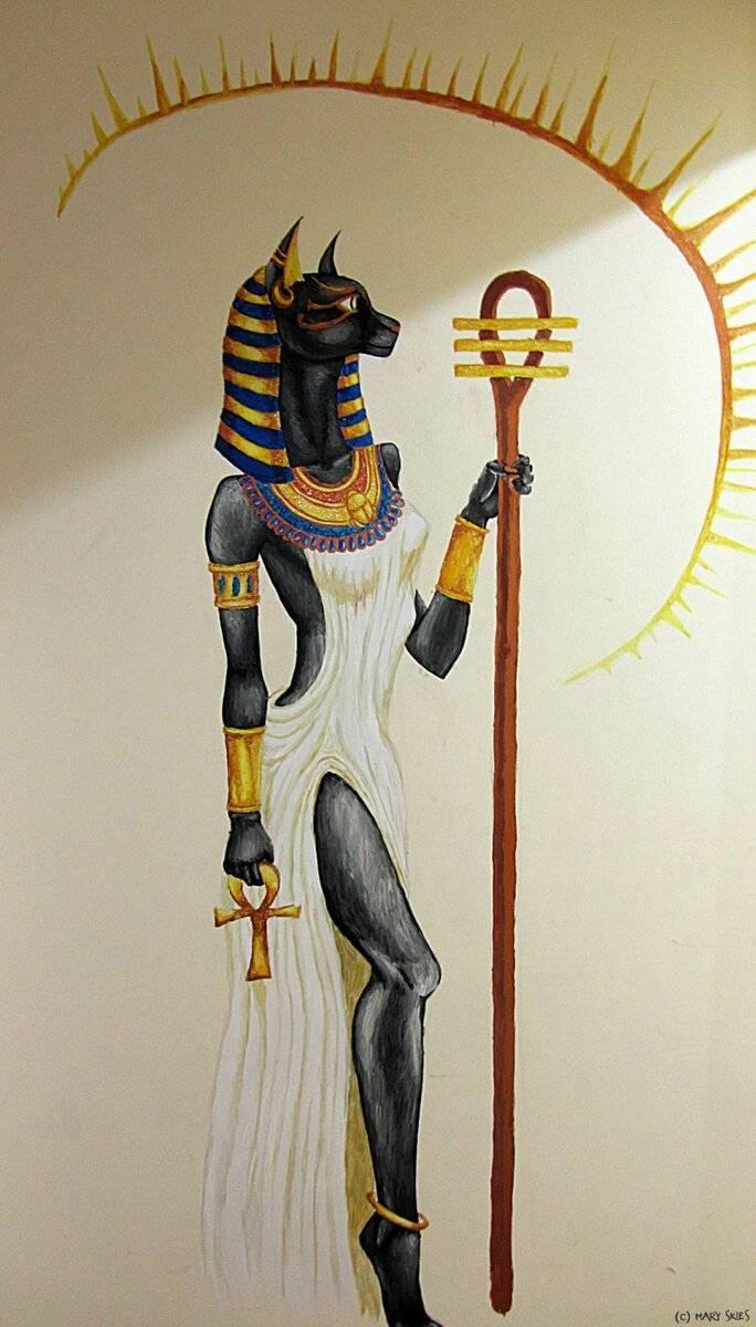 Священные животные в древнем египте: кошки, мангусты, скарабеи, сокол