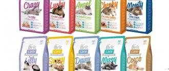 Обзор корма для кошек леонардо (leonardo): виды, состав, отзывы