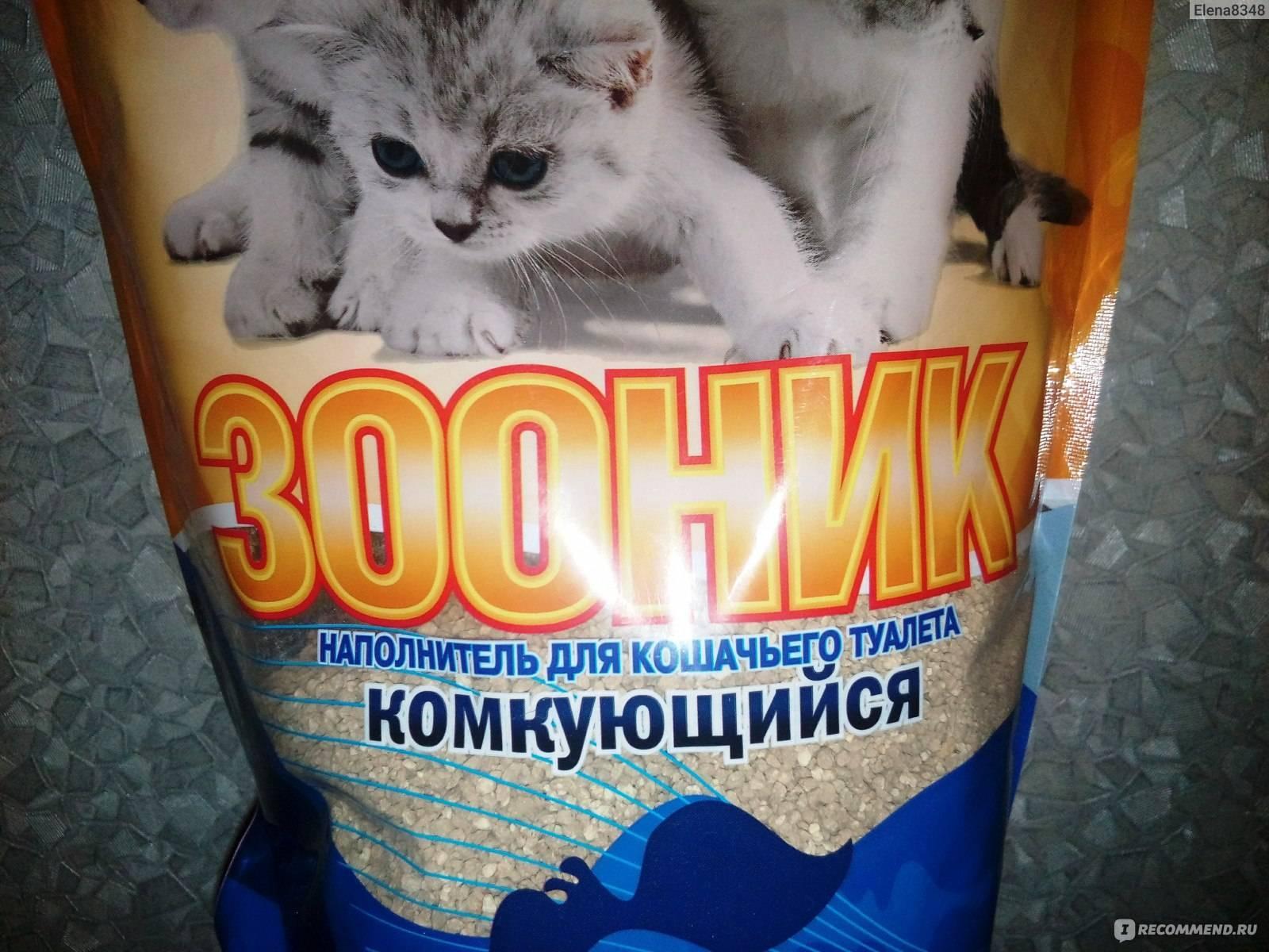Что делать, если котенок ест наполнитель для туалета?