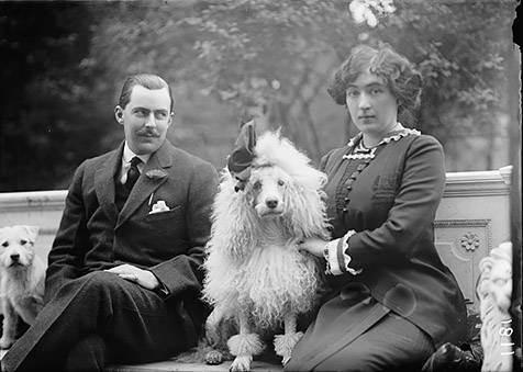 Как покупка собаки привела хозяйку в бизнес. история салона «зоостиль»