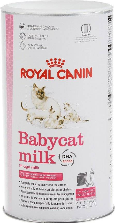 Cухое молоко для котят
