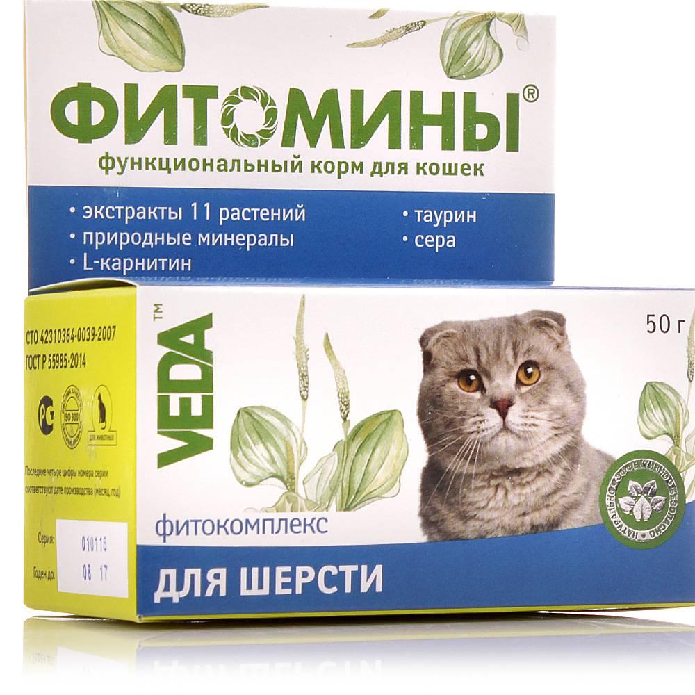 Витамины, средства и добавки против выпадения шерсти у кошек - причины и лечение - ecodobavki