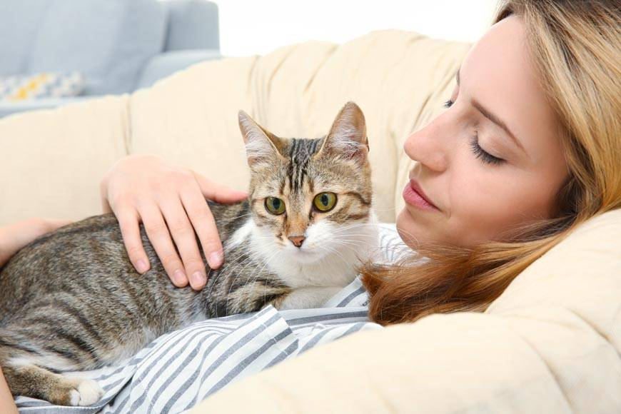 Какие заболевания человека выявляют кошки и чувствуют ли они, что мы больны