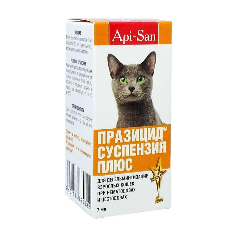 Празицид для кошек и котов (суспензия, таблетки, капли на холку): инструкция по применению у взрослых животных и котят, отзывы