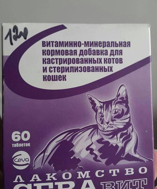 Рейтинг лучших витаминов для кошек и котов 2021 года