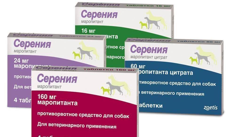 Серения для кошек: инструкция по применению, показания и противопоказания, аналоги, отзывы