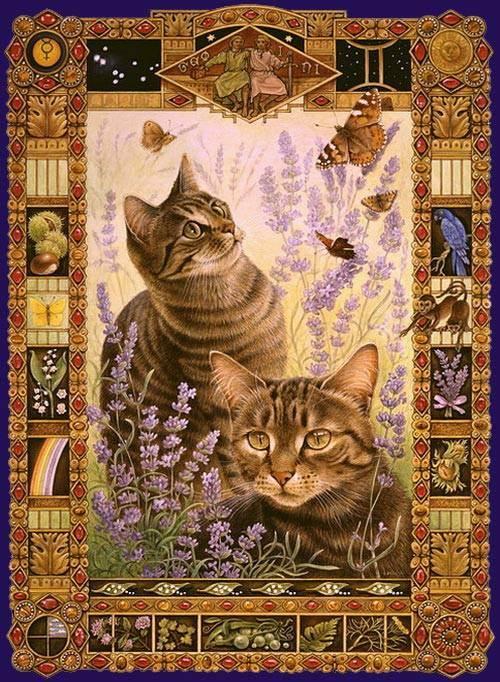 Скорпион. гороскоп для кошек
