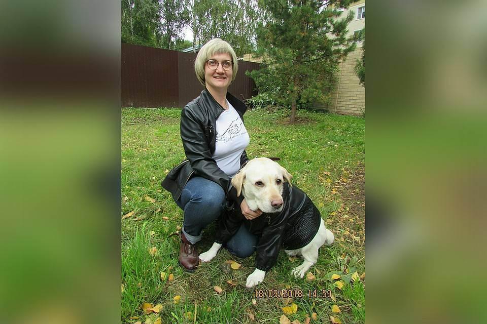 Кратко о ветеринарной реабилитации