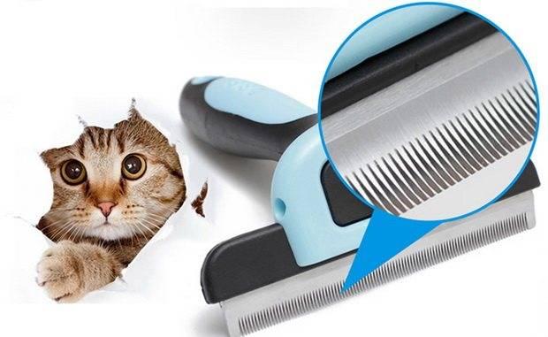 Как выбрать фурминатор для длинношерстных кошек и как правильно пользоваться щеткой-расческой?