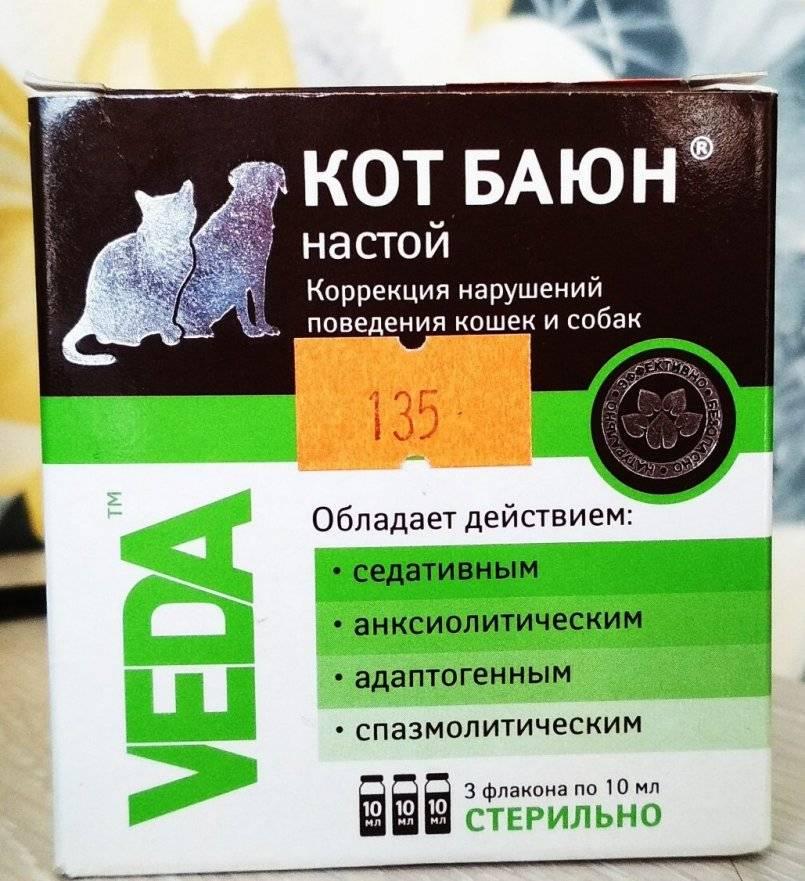 Чем лечить аллергию у кошек лекарства