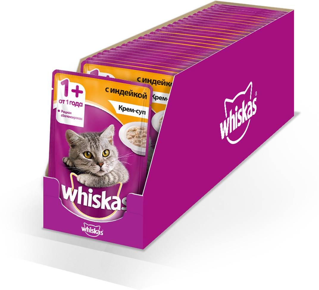 Как отучить кошку от сухого корма: эффективные и работающие способы