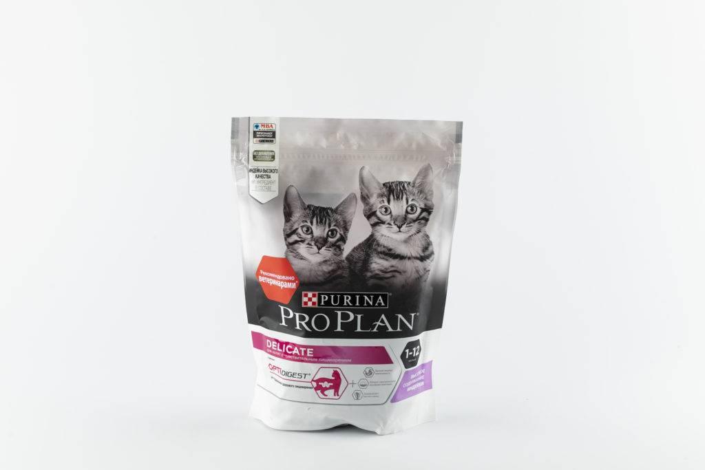 5 лучших лечебных кормов для кошек - рейтинг 2020