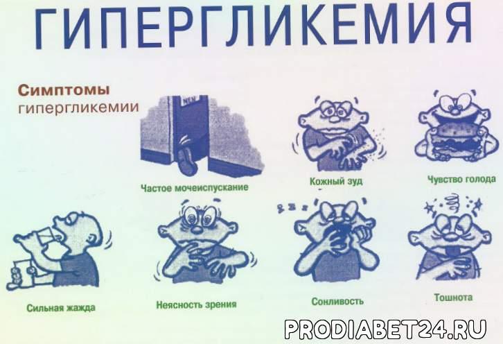 Сахарный и несахарный диабет у кошек и котов - симптомы, лечение, признаки, диета, питание