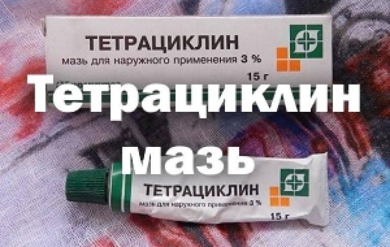 Тетрациклин для животных: топ-10 препаратов и инструкции по применению
