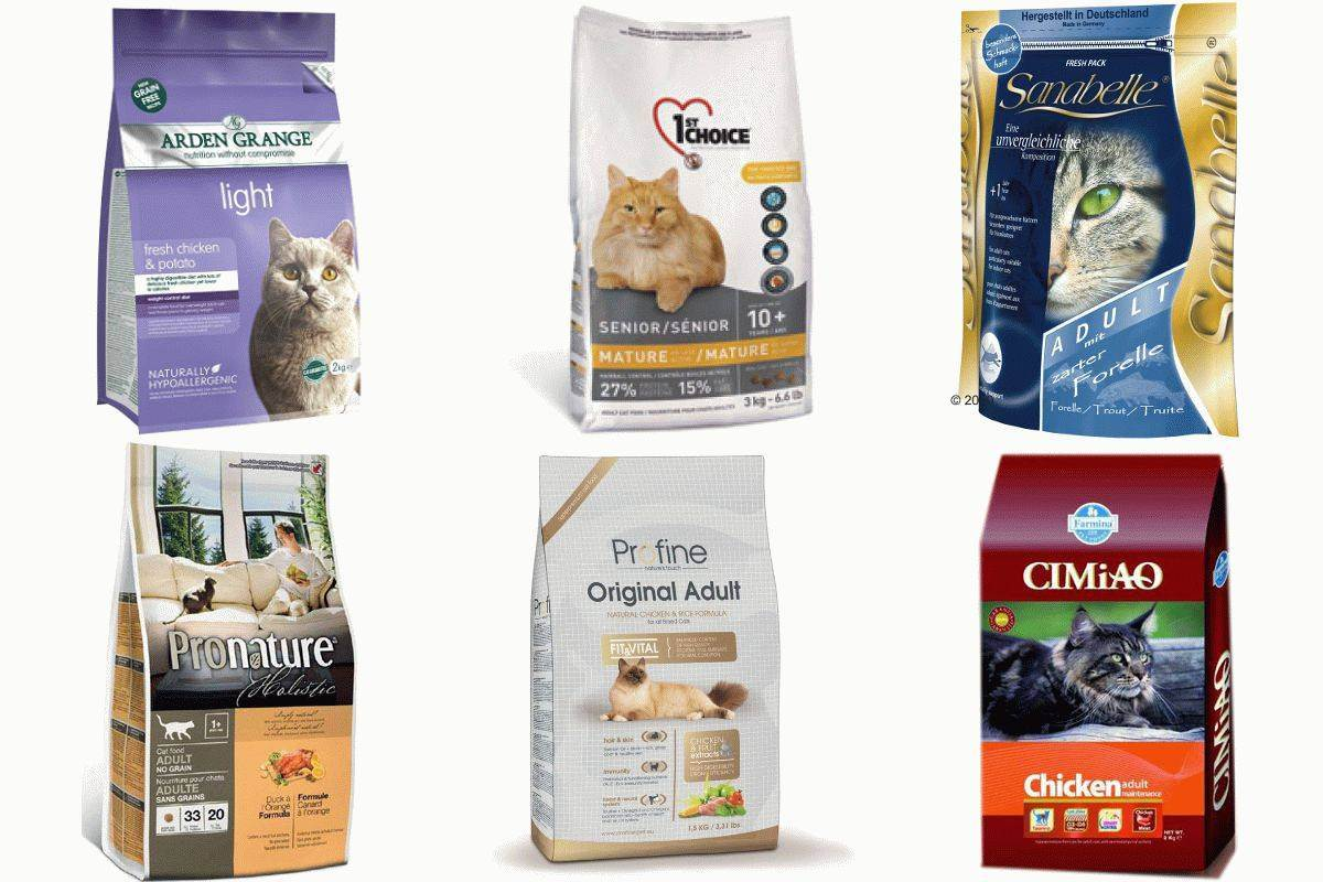 Актуальный рейтинг кормов холистик класса для кошек 2020