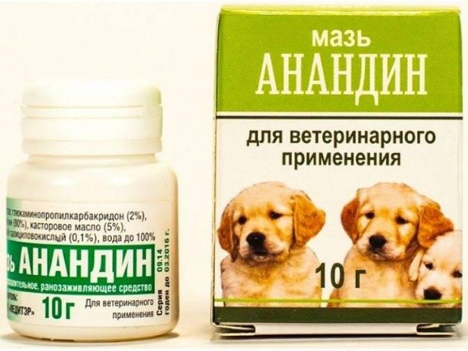 Анандин для кошек инструкция по применению уколы | глазной.ру