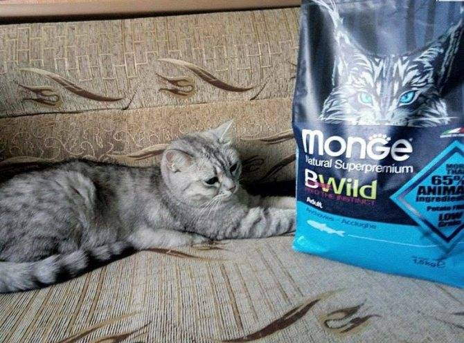 Monge корм для собак - отзывы ветеринаров и владельцев о монже   petguru