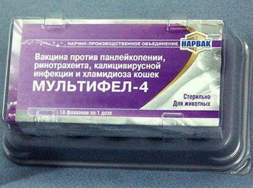 ᐉ мультифел 4: инструкция по применению вакцины для кошек, побочные эффекты и противопоказания - kcc-zoo.ru