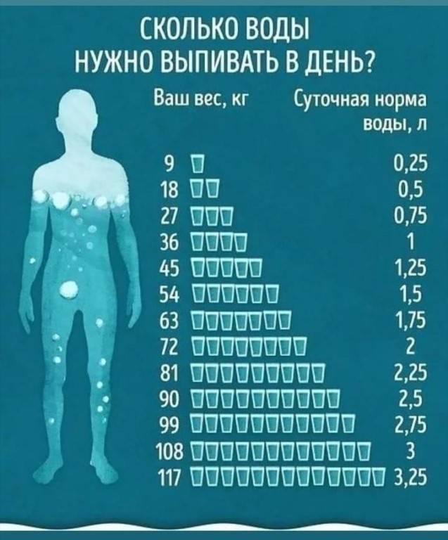 Сколько воды должна пить кошка в сутки: норма употребления жидкости, причины обильного питья или отказа от воды, какой водой поить кошку