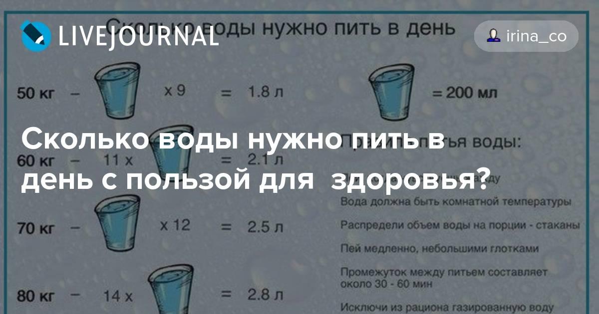 Сколько должен пить воды кот в день сколько должен пить воды кот в день