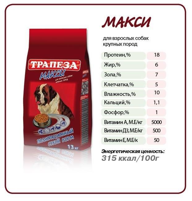 Можно ли давать кошачий корм собаке, что будет если собака съест кошкину еду?
