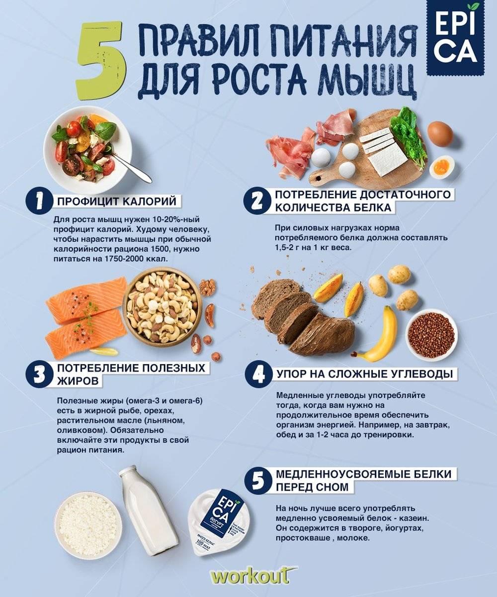 Чем кормить кота, чтобы он набрал вес? | zdavnews.ru