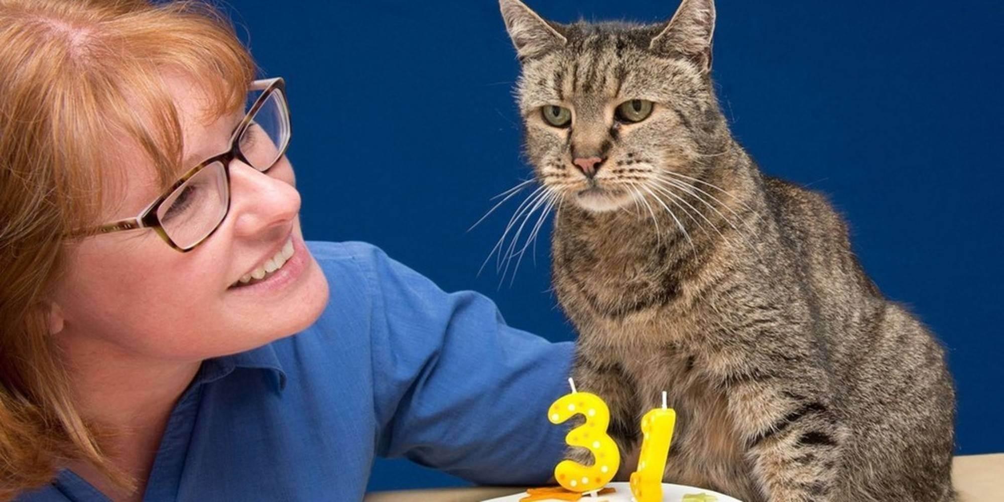 Самые старые в мире коты